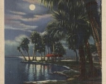 Moonlight on a Florida Beach (Art Prints available in multiple sizes)