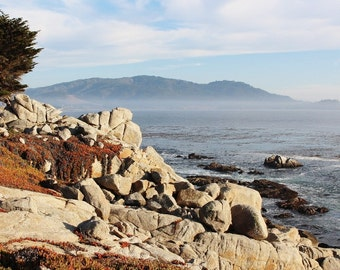 On the 17 Mile Drive at Pebbe Beach, CA