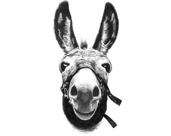"""Donkey Print - Maurice - 8 x 11"""" - home, wedding or Mother's day gift -"""