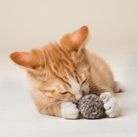 organic wool cat toy ball