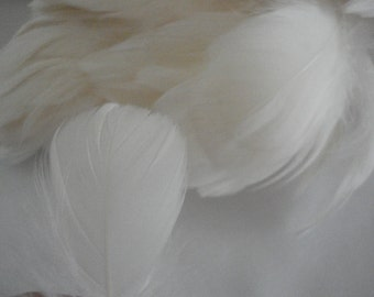 Ivory Goose Feathers for Bridal Headpieces and more - 4 inch fringe