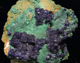Beautiful Blue to Dark Blue Azurite crystals and Rosettes With Green Velvet Botryoidal Malachite