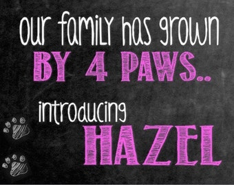 Digital Chalkboard    New Dog    New Puppy    Growing Family    Announcement