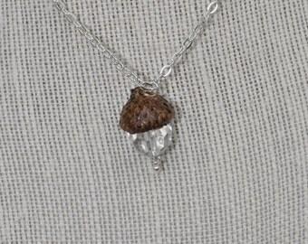 Jewelry - Acorn Necklace - Silver
