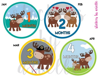 Month by Month Unisex Baby Stickers - Boston Sports Moose
