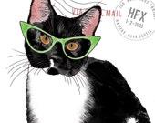 Hipster Cat Elektra Postc...