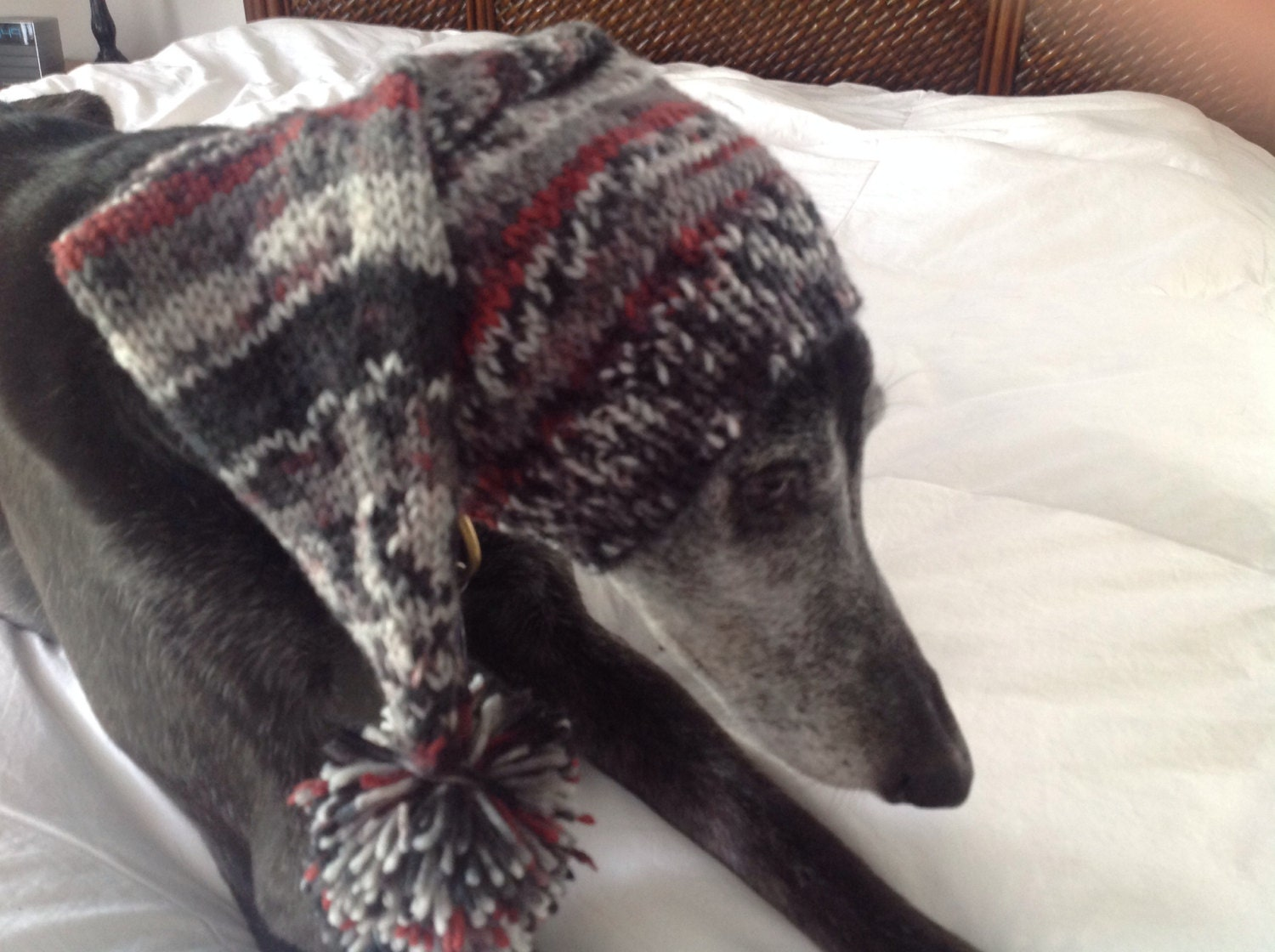 Pointed hat with snood for greyhound fair isle pattern coal fire bankloansurffo Images