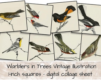 Vintage Birds in Trees Drawings 1-inch squares 0105