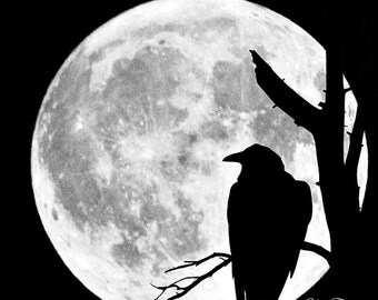 Raven and the Moon-12x12,10x10, 5x5 Mounted Print