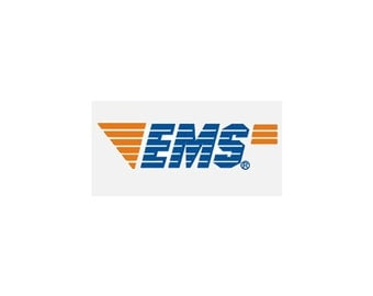 EMS Upgrade Delivery Service