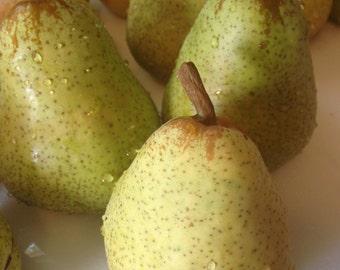 Cognac Pear Jam
