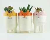 Three Fox Plant Pots - White and Orange Ceramic Fox Planters