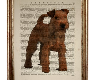 Lakeland Terrier Dog, beautiful Art Print on Upcycled Dictionary Book page 8'' x 10'' inches