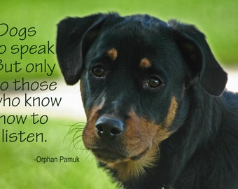 Dogs do speak to those who know how to listen.