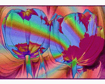 Tulips and Rainbows, a print from a computer manipulated photo, embossed visually, flowers, reds, rainbow, modern, abstract, drawing,