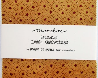 Moda Charm Pack ~ Seasonal Little Gatherings