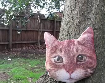 Cat pillow - ginger cat face cushion