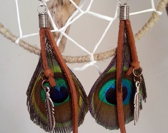 Earrings feather Peacock