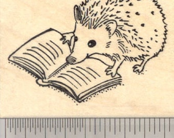 Reading Hedgehog Rubber Stamp H28516 Wood Mounted