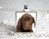 """CLOSEOUT SALE Chocolate Labrador Puppy 1"""" Square Pendant Necklace with Paw Print Organza Bag"""
