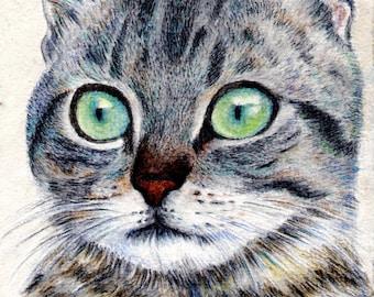 cat drawing  - A Grey Tabby - small art print desk decoration wall art kid room nursery room dorm decor