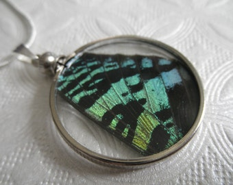 Sunset Moth Wing Looking Glass Pendant-Iridescent Blue-Green Sunset Moth Wing Between Glass-Symbol Noble Spirit-Nature's Art-Gifts For 30