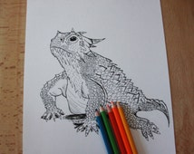 Downloadable Horny Toad Coloring Page