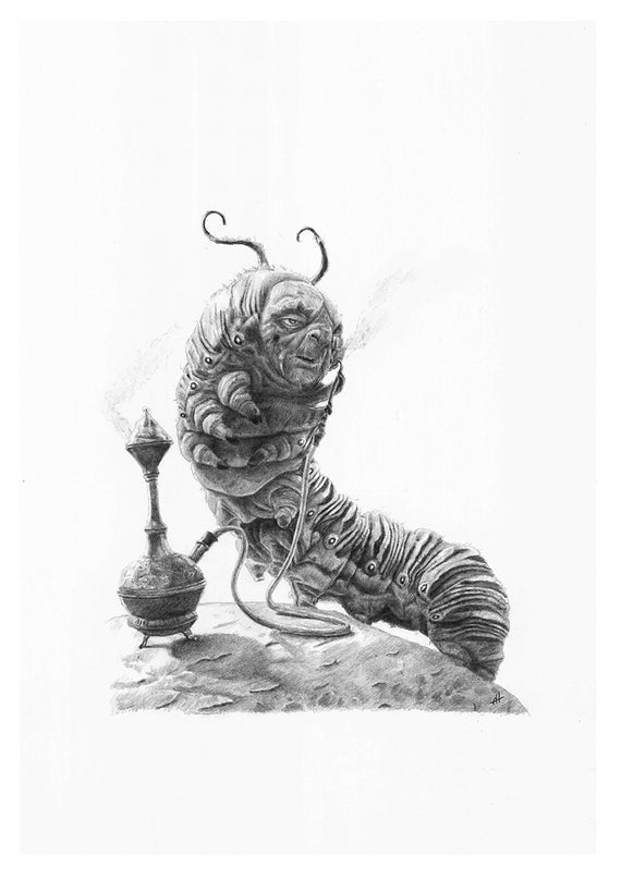 alice in wonderland caterpillar pencil drawing