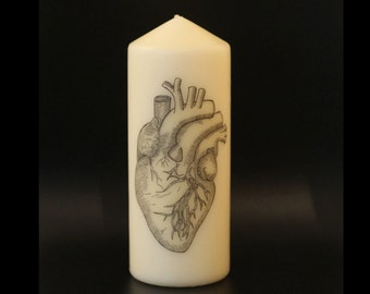 Anatomical Heart - Pillar Candle - Anatomical Decor
