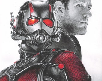 Drawing Print of Paul Rudd as Scott Lang / Ant-Man