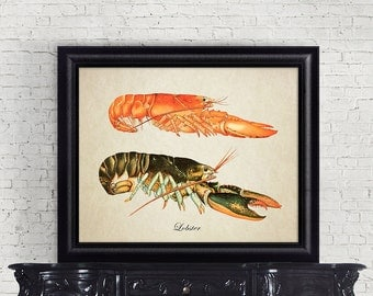 Antique Botanical Wall Art Lobster Print Crustacean Giclee Vintage Natural History Nautical Art Decorative Sea Life Reproduction SL002