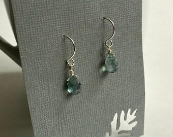 Teal Delphine Drop Earrings