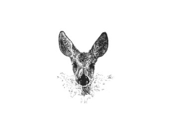 """Deer Print - The Doe - 8 x 11"""" - home, wedding or Mother's day gift -"""