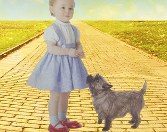 Wizard of Oz Dorothy Dress Costume Sizes Baby to Toddler 4