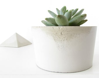 concrete planter - cactus and succulent cement pot