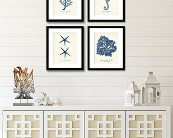 Set of 4 Navy Blue Nautical Prints,  Posters, Coral Seahorse & Starfish Digital Illustrations, Wall Decor, Beach House Wall Art, Coastal Art