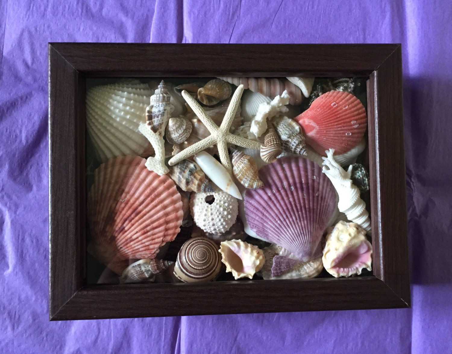 Sea shell shadow box nautical decor beach decor home decor for Shells decorations home