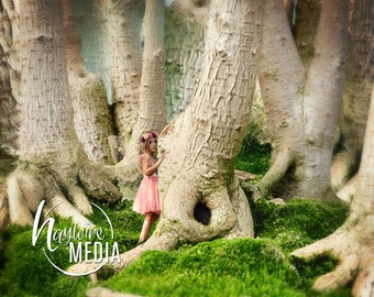 Magical Child Fairytale Enchanted Nature Forest Digital Photo Backdrop Background for Photographers with Trees - Instant Download