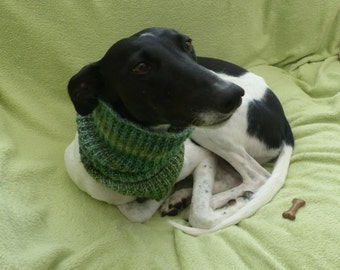 Bandana style Lurcher/Greyhound snood - Made to order
