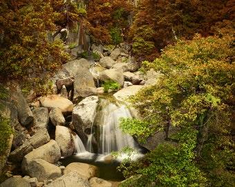 Yosemite, Waterfall, Fall, Smoke, Trees, Rocks, California, Park