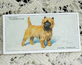DogsTrade Card From Wills Cigarettes, 1800s Card, Cairn Terrier, Scrapbooking, Collage, Tuck Ins, Card Making, Altered Art  #528 OK