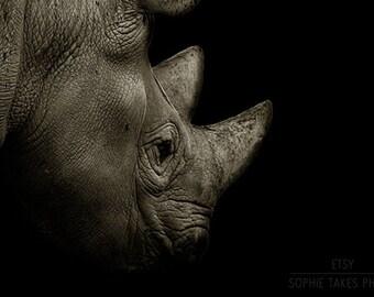 Rhino canvas art, animal photography, black decor, safari picture, African, wildlife, fine art photography, oversized, square canvas, 24x36