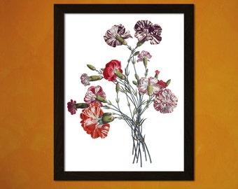 Vintage Flower Print - Vintage Wall Decor Botanical Prints Flower Print Garden Home Decor Romantic Floral Illustration Flower Art
