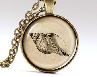Shell Necklace, Snail pendant, Vintage Amulet, Vintage Jewelry, Necklaces Pendants LG582