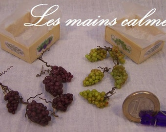 Case of miniature grape / 10th and 12th