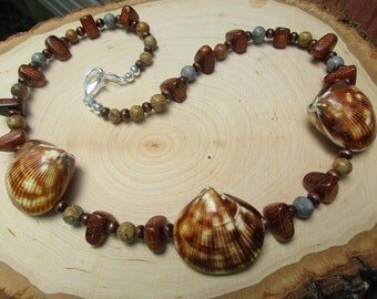 Clam Shell Necklace
