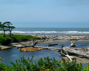 Life's a Beach - Kalaloch Beach Washington State