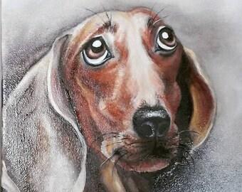 Dear friend. Portrait of a dachshund