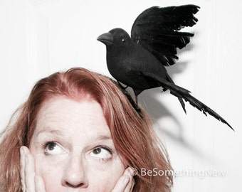 Black Bird Halloween Costume, Halloween headband, The Birds, Scary Halloween Hair Accessory, Bird Costume Accessories