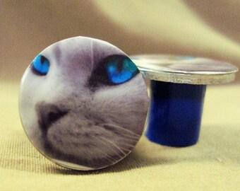 Blue Eyed Cat Gauges Handcrafted